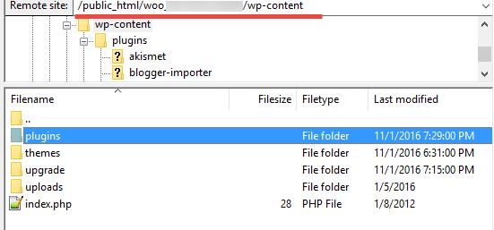 Plugins folder on FTP