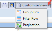 Customize View Option